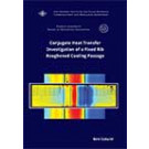 Conjugate Heat transfer investigation of a fixed rib roughened c